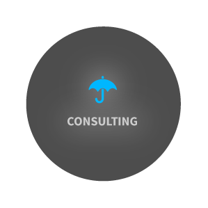 circ_consult